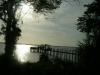 pier in dunedin(crabbs)