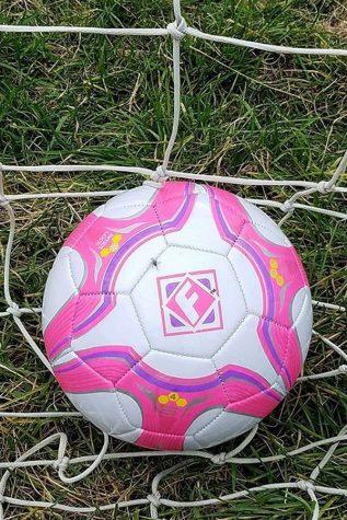 Striving for Soccer Success