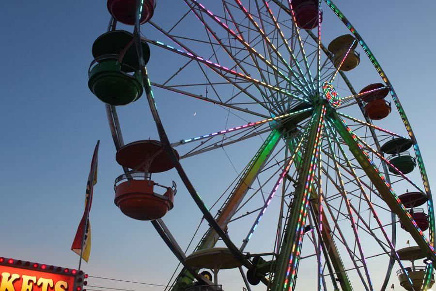 IMG_0049 fair