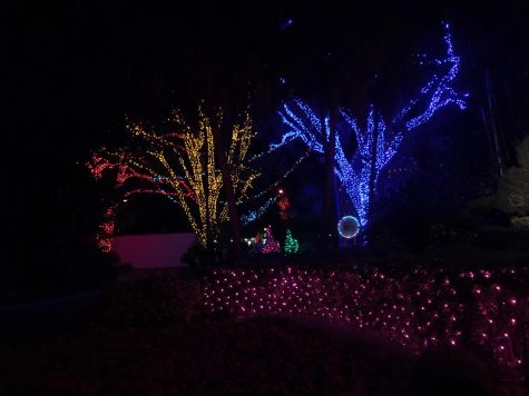 Christmas season lights up Pinellas County