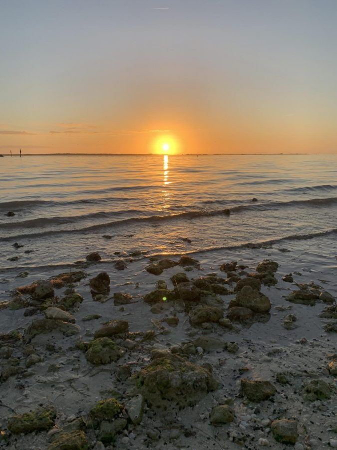 One+popular+place+to+visit+during+summer+can+be+the+Dunedin+Causeway+to+view+the+sunsets.