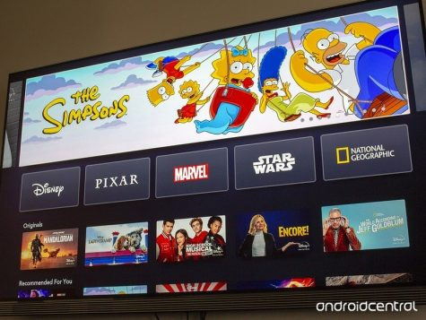 Examples of the variety of channels provide including shows and movies on Disney+