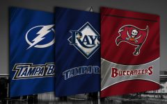 Tampa Bay's three sports teams (courtesy of Tampa Bay Date Night Guide.)